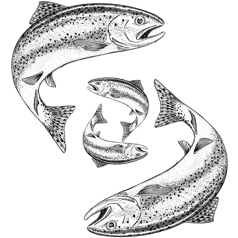 Holbury Lakes 4 Fish Ticket Parent & Child