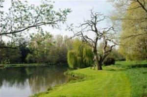 Holbury Lakes - Long Lake