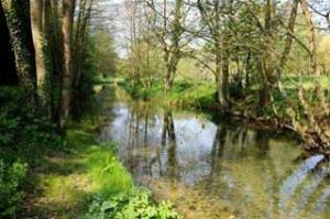 Holbury Lakes - The River Dun 2