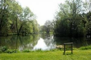 Holbury Lakes - Willow Lake
