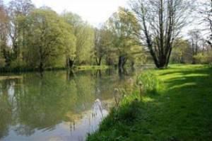 Holbury Lakes - Willow Lake 2