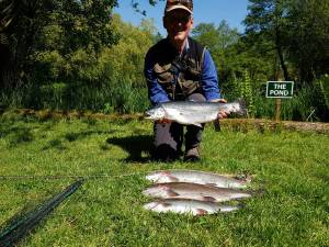 Mike Guest – 4 fish totaling 20Ibs
